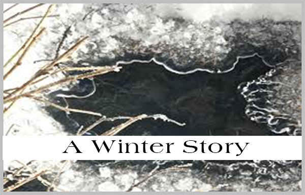 F.H.B. in My Life #21… A winter story